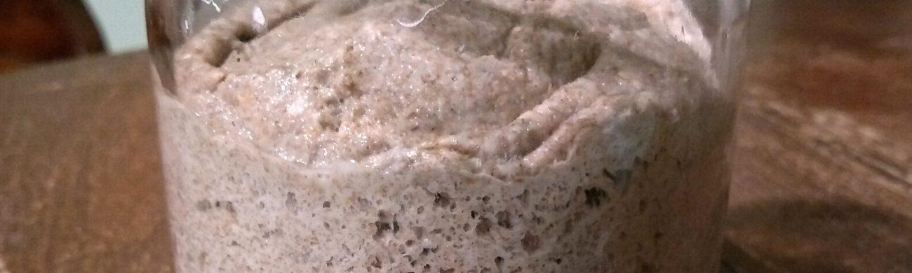 Chleb nasz powszedni – zakwas